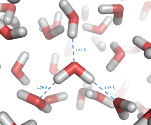 Liquid_water_hydrogen_bond